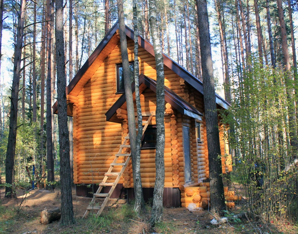 Дом Волма 1